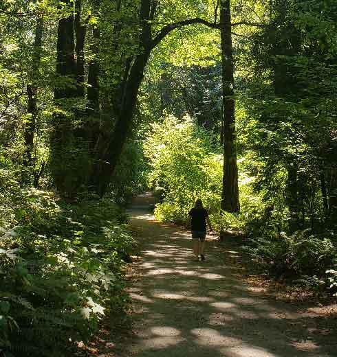 Lynn on Upper Seward Park trail